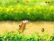 Running Hamster Cool…